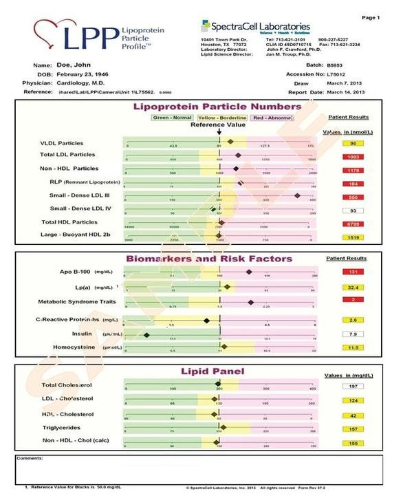 CardioMetabolic LPP Sample Report | Dandelion Nutrition | Seattle, WA